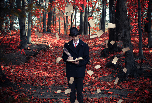 The Storyteller-Michael Shaheen, Flickr