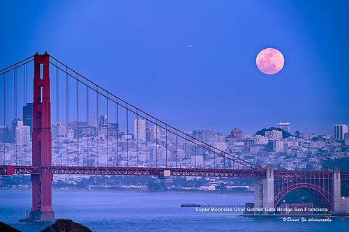 Honey moon, San Francisco bridge