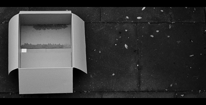 Boxed by Craig J. Sunter, flickr.com
