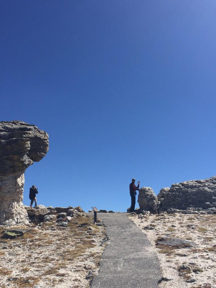 The Mushroom Rocks at RMNP